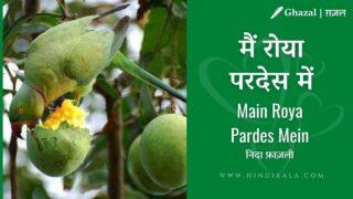 Jagjit Singh : Main Roya Pardes Mein (Dohe)   मैं रोया परदेस में   Album – Insight (1994)