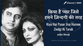 Jagjit Singh & Chitra Singh – Kiya Hai Pyaar Jise Humne Zindgi Ki Tarah | किया है प्यार जिसे हमने ज़िन्दगी की तरह | Album – Best of Jagjit Singh Chitra